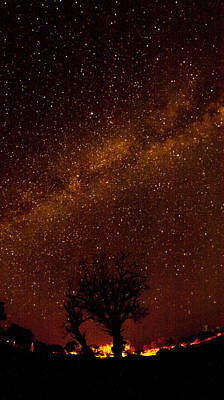 Milky Way Tree Poster