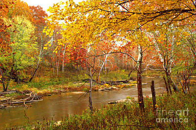 Poster featuring the photograph Mill Creek 1 by Jim McCain