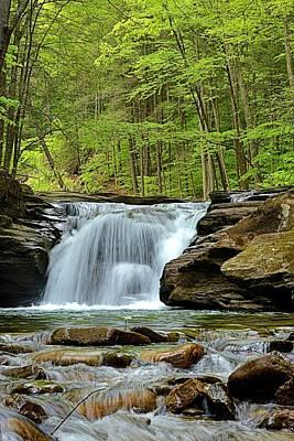Mill Creek Falls #2 Poster