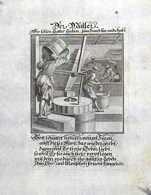 Miller, A Person Who Operates A Mill, Old Master Print Poster