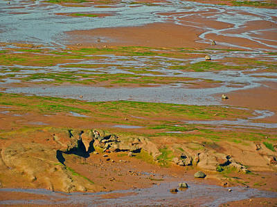 Minas Basin In Afternoon At Fundy Bay Near Grand Pre-ns Poster by Ruth Hager