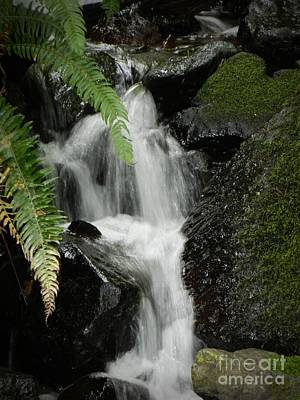 Mini Waterfall  Poster by Chalet Roome-Rigdon