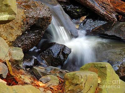 Mini-waterfall Poster by Marcia Lee Jones