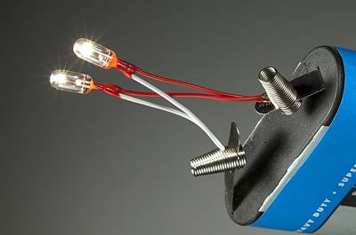 Miniature Light Bulbs And Battery Poster