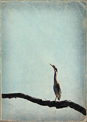 Minimalist Vintage Inspired Green Heron On Pale Blue Sky Poster
