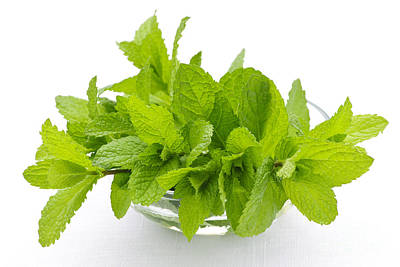 Mint Sprigs In Bowl Poster