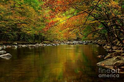 Poster featuring the photograph Mirror Fall Stream In The Mountains by Debbie Green