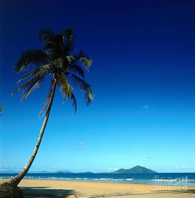 Mission Beach And Dunk Island Poster by Dale Boyer