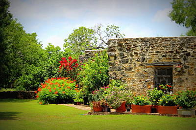 Mission Espada - Garden Poster by Beth Vincent