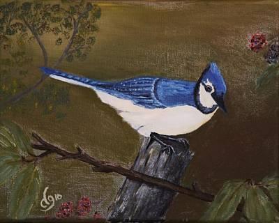 Missouri Blue Jay Poster
