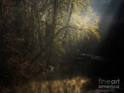 Poster featuring the photograph Misty Creek by Inge Riis McDonald