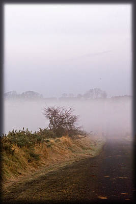 Poster featuring the photograph Misty Morn by Liz  Alderdice