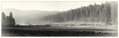 Misty Morning In Yosemite Sepia Poster by Jane Rix