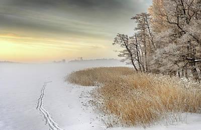 Misty Winter Morning Poster