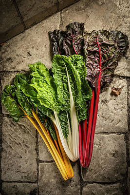 Mixed Chard Poster by Aberration Films Ltd
