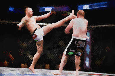 Mixed Martial Arts - A Kick To The Head Poster by Elaine Plesser