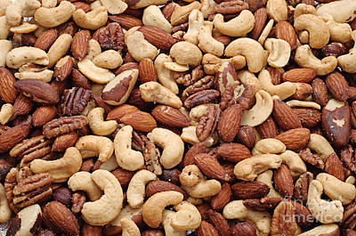 Mixed Nuts Poster by Andee Design