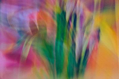 Poster featuring the photograph Modern Art Flower Garden by Susan Leggett