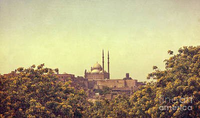 Poster featuring the photograph Mohamed Ali Mosque by Mohamed Elkhamisy