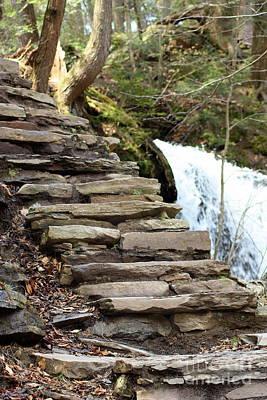 Mohawk Falls Steps Poster