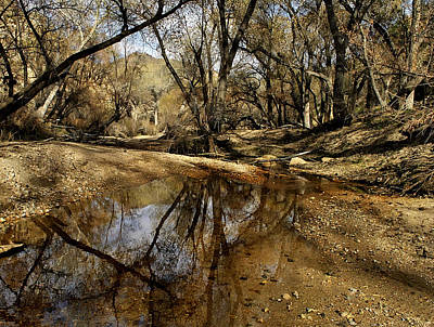 Mojave River Poster