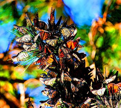Monarch Butterfly Migration Poster by Tap On Photo