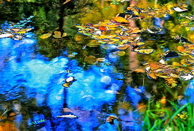 Poster featuring the photograph Monet's Garden by Ira Shander