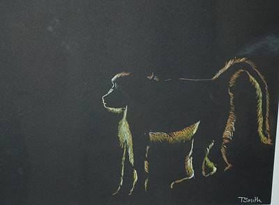 Monkey At Dawn Poster