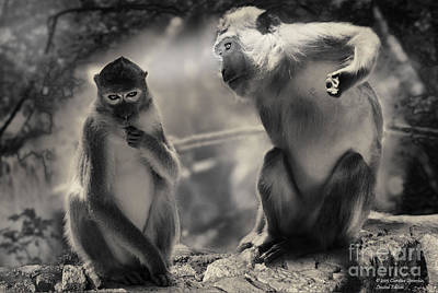 Poster featuring the photograph Monkeys In Freedom by Christine Sponchia