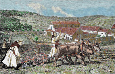 Monks Plowing The Land With Oxen Poster
