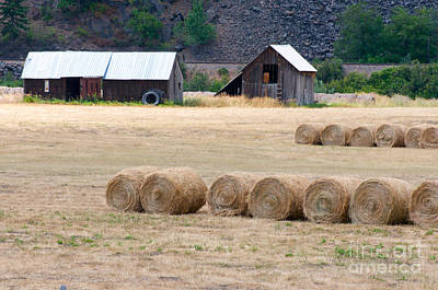 Poster featuring the photograph Montana Bales by Vinnie Oakes