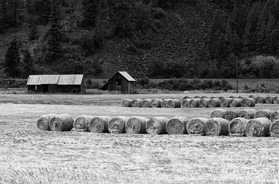 Poster featuring the photograph Montana Harvest B/w by Vinnie Oakes
