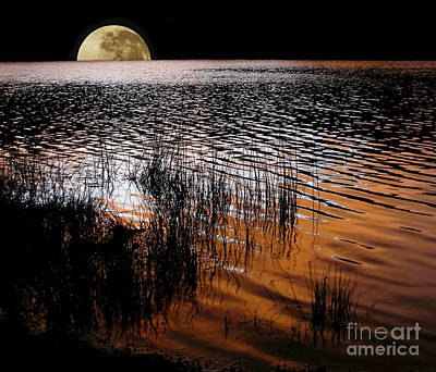 Moon Catching A Glimpse Of Sunset Poster by Kaye Menner