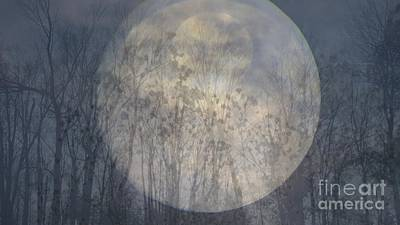 Poster featuring the photograph Moon Shadow by France Laliberte