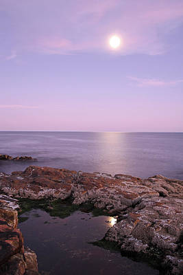 Moonrise In Acadia National Park Poster