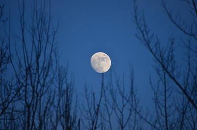 Moonrise Poster by James Petersen