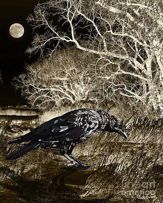 Moonshadow Poster by Judy Wood