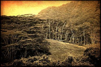 Poster featuring the digital art Moorea Landscape by Milton Thompson