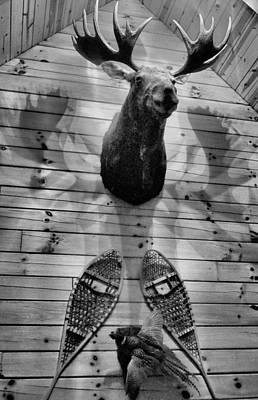 Moose Cabin Poster