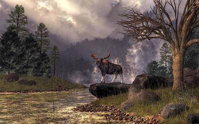 Moose In The Adirondacks Poster by Daniel Eskridge
