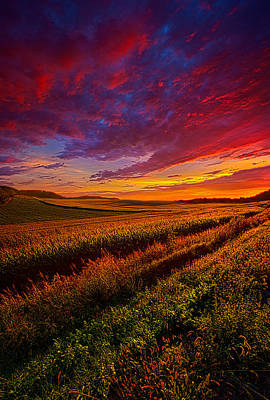 More Than A Feeling Poster by Phil Koch