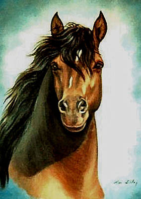 Poster featuring the painting Morgan Horse by Loxi Sibley