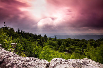 Morning At Dolly Sods Poster by Shane Holsclaw