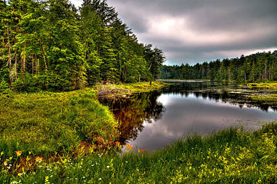 Morning At Fly Pond Poster by David Patterson