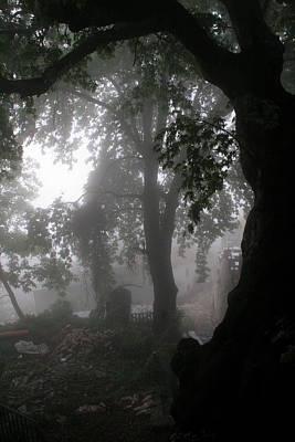 Morning Fog Poster by Arie Arik Chen