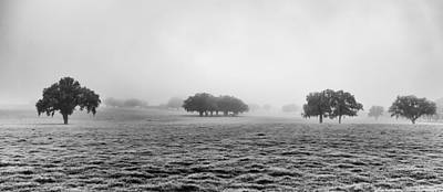 Morning Fog Poster by Howard Salmon