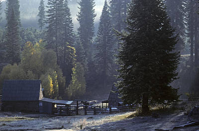 Poster featuring the photograph Morning Frost At Dawn by David Bailey