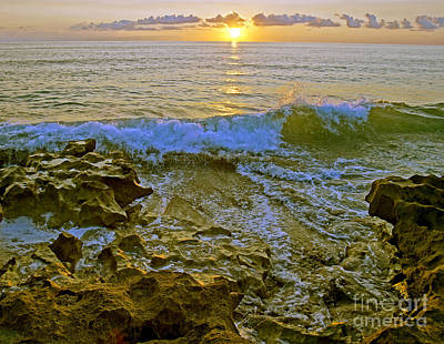 Poster featuring the photograph Morning Glory by Larry Nieland