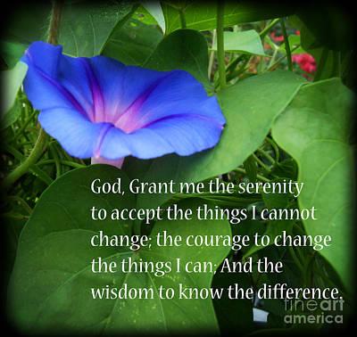 Morning Glory Serenity Prayer Poster by Eva Thomas