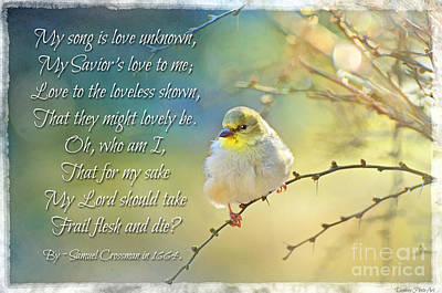 Morning Goldfinch With Verse I Poster by Debbie Portwood
